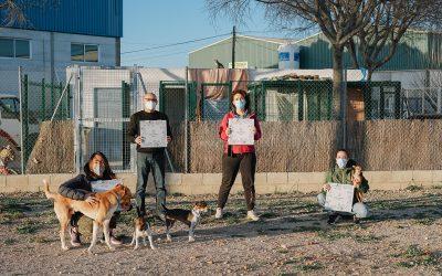 QUINA ANIMALÀ! Donación nº 1 🐶 Associació Animalista de Bellreguard