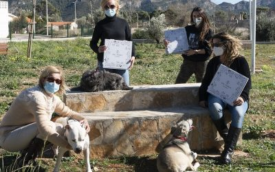QUINA ANIMALÀ! Donación nº 2  🐶 Asociación Patitas Casas de Acogida de Gandía